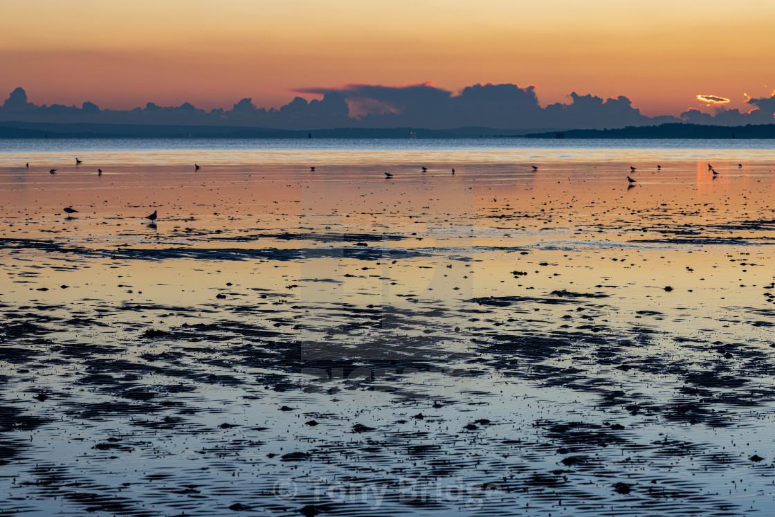 """Sunset and mud"" stock image"