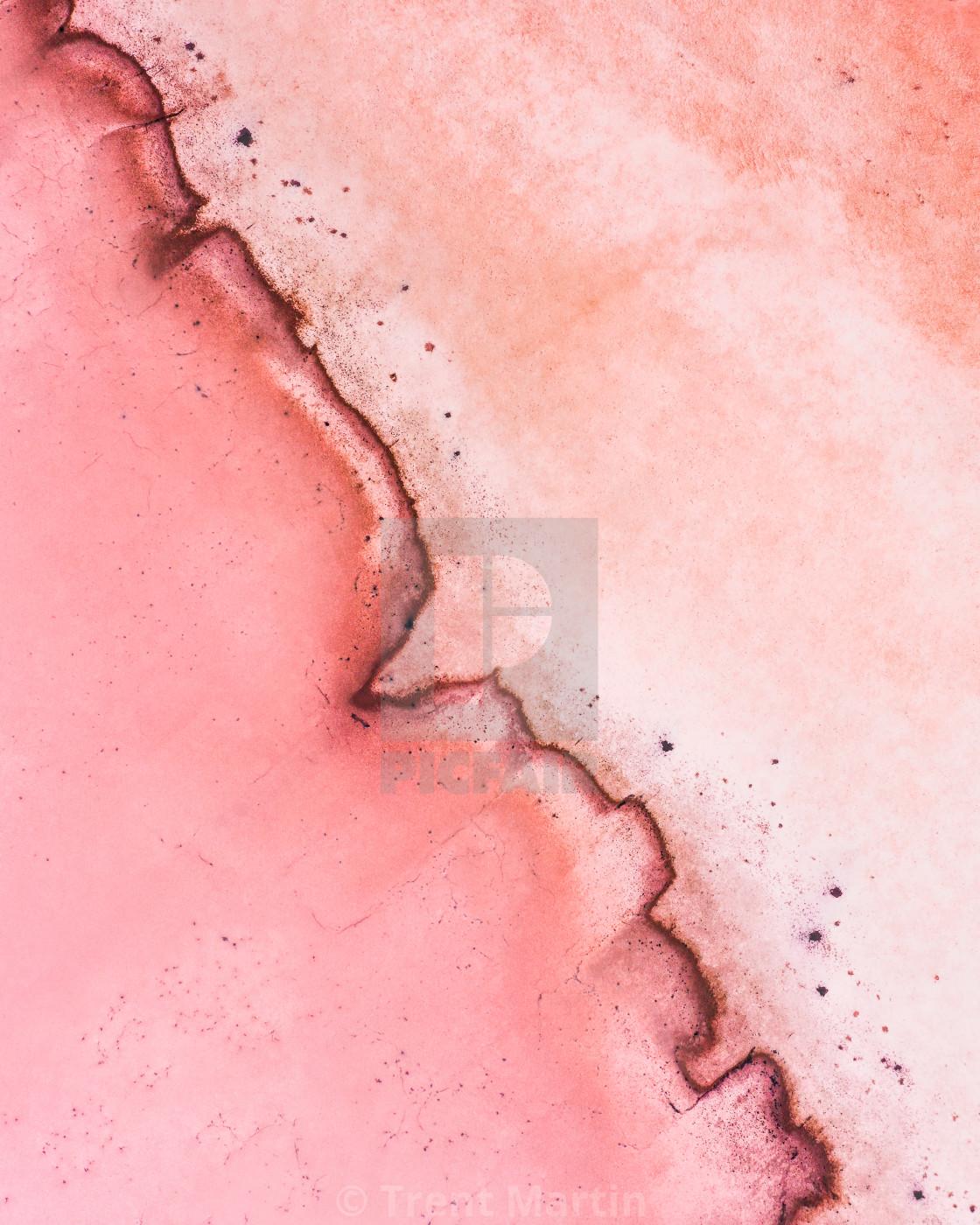 """Nature's Heartbeat"" stock image"