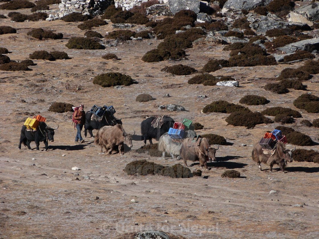 """Himalayan Highway"" stock image"