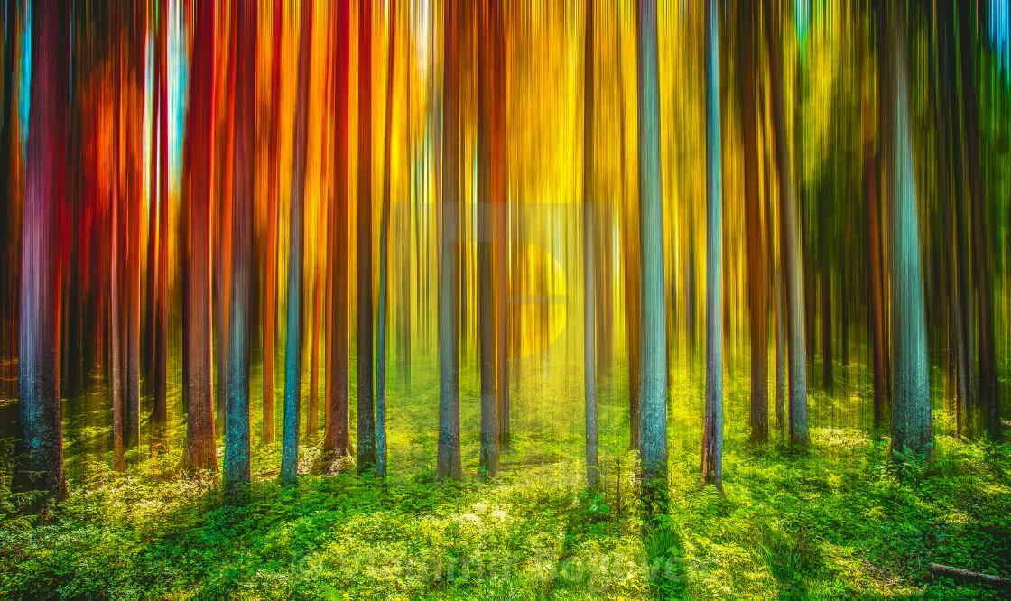 """Colour tree"" stock image"