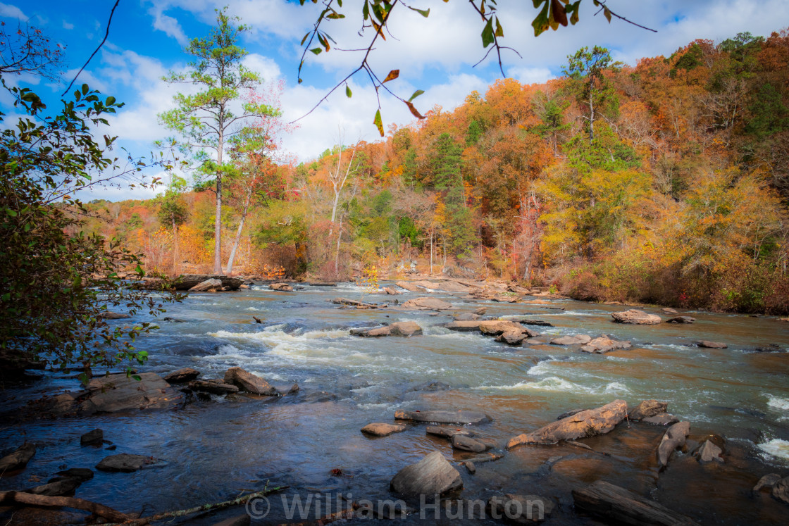 """""""Sunny Day by the Creek"""" stock image"""