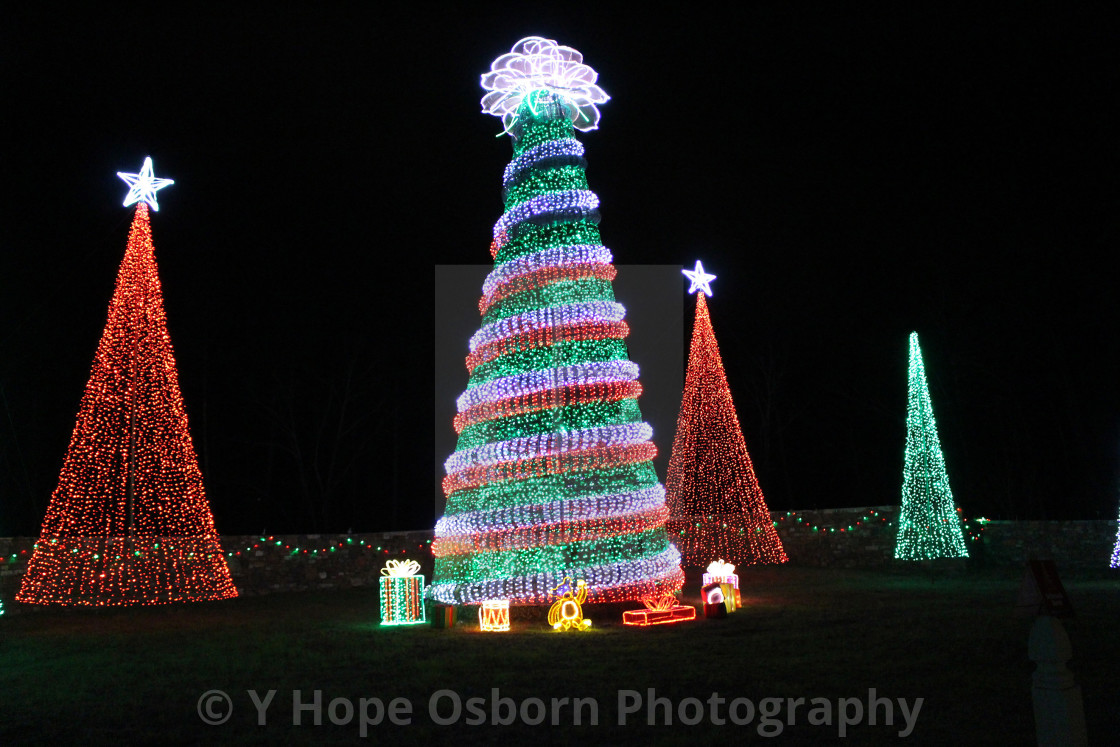 """""""glowing lights in christmas tree shapes"""" stock image"""