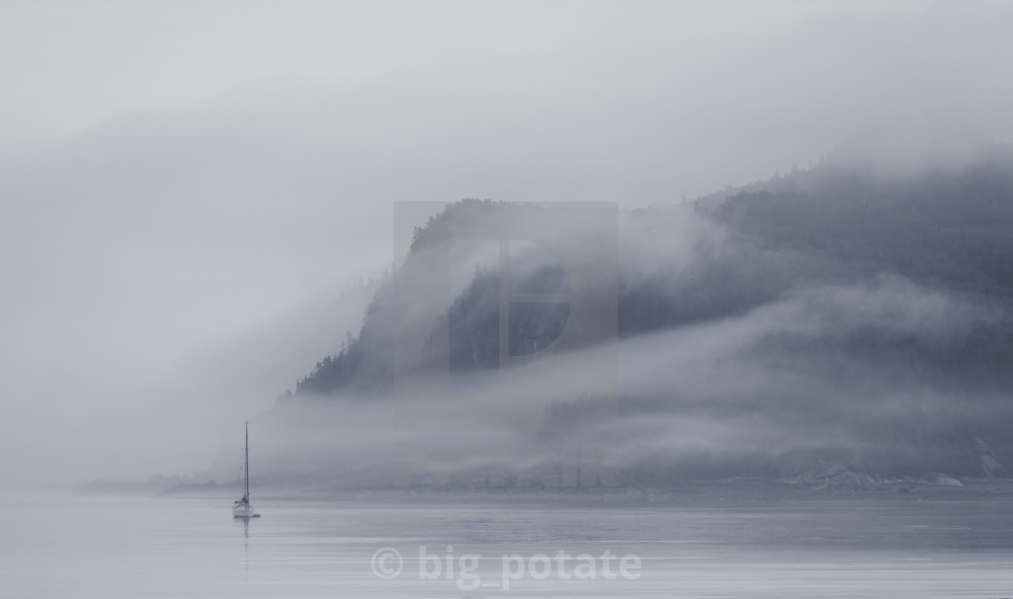 """""""Foggy Morning"""" stock image"""