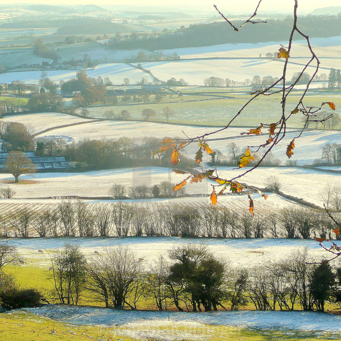 """""""Herefordshire Early Winter"""" stock image"""