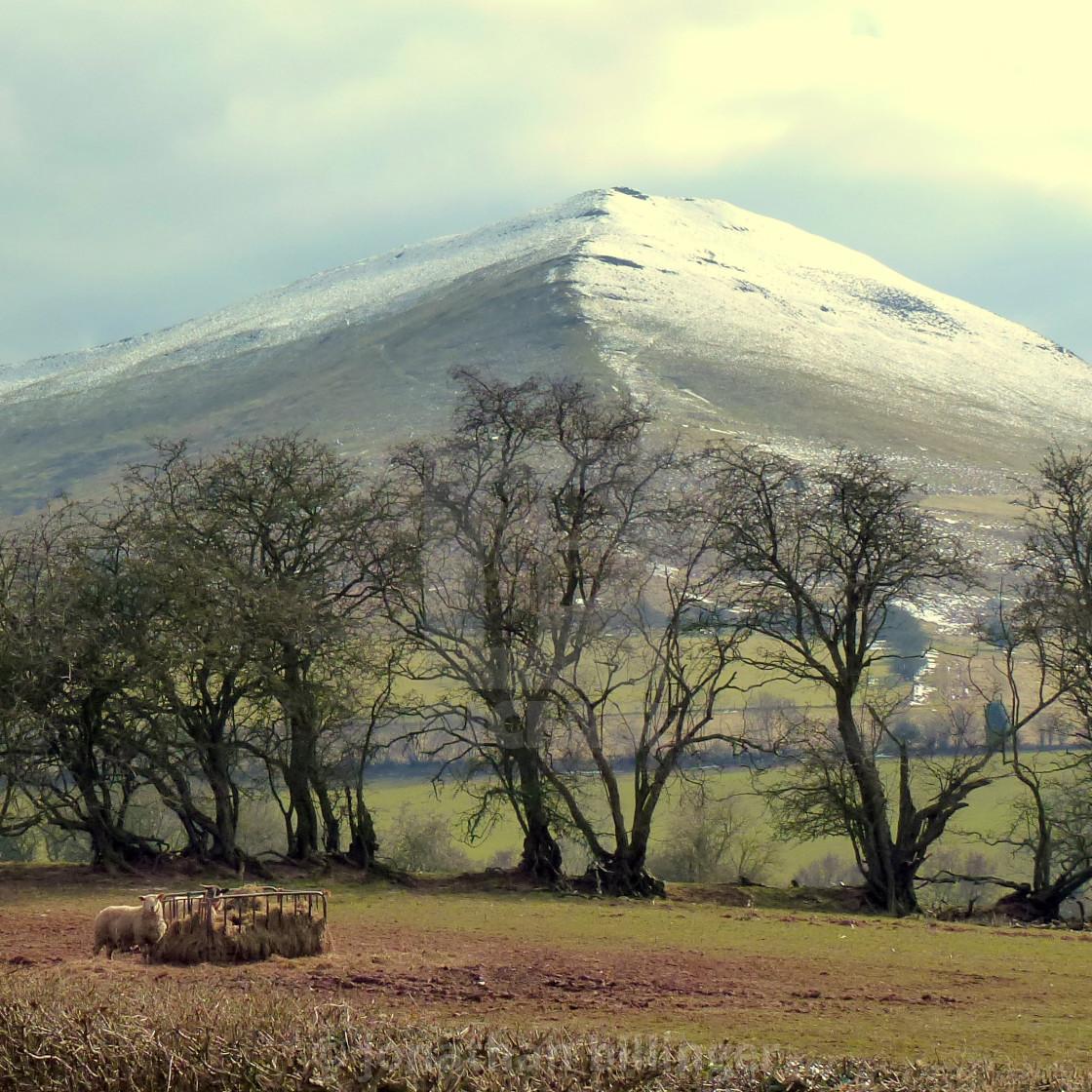 """""""Mynydd Troed in Winter"""" stock image"""