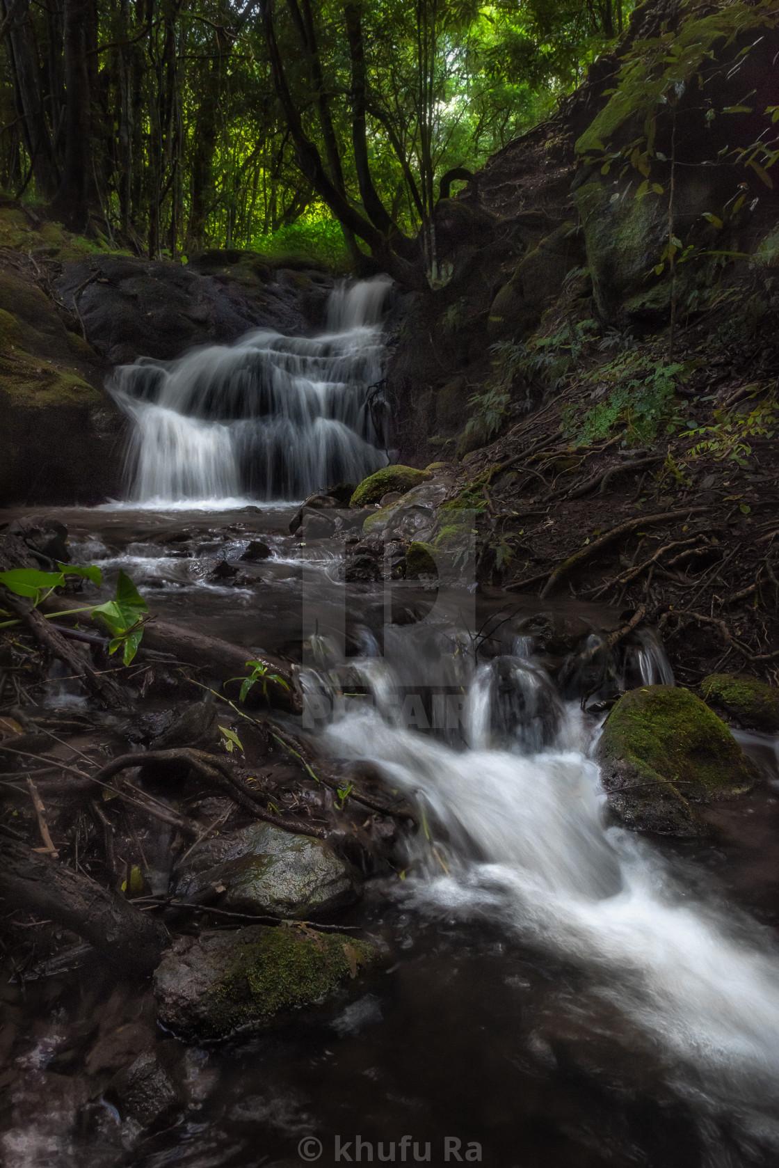 """""""Photo walk at Whian Whian Falls image #4"""" stock image"""