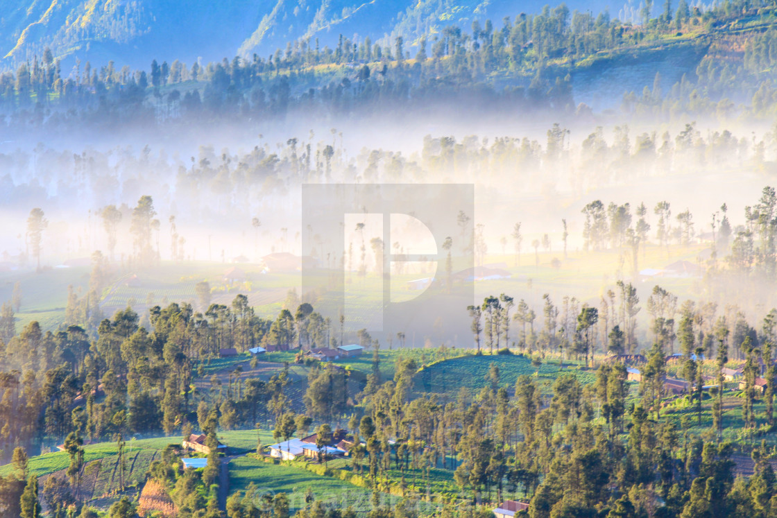 """cemoro lawang at dawn with mist"" stock image"