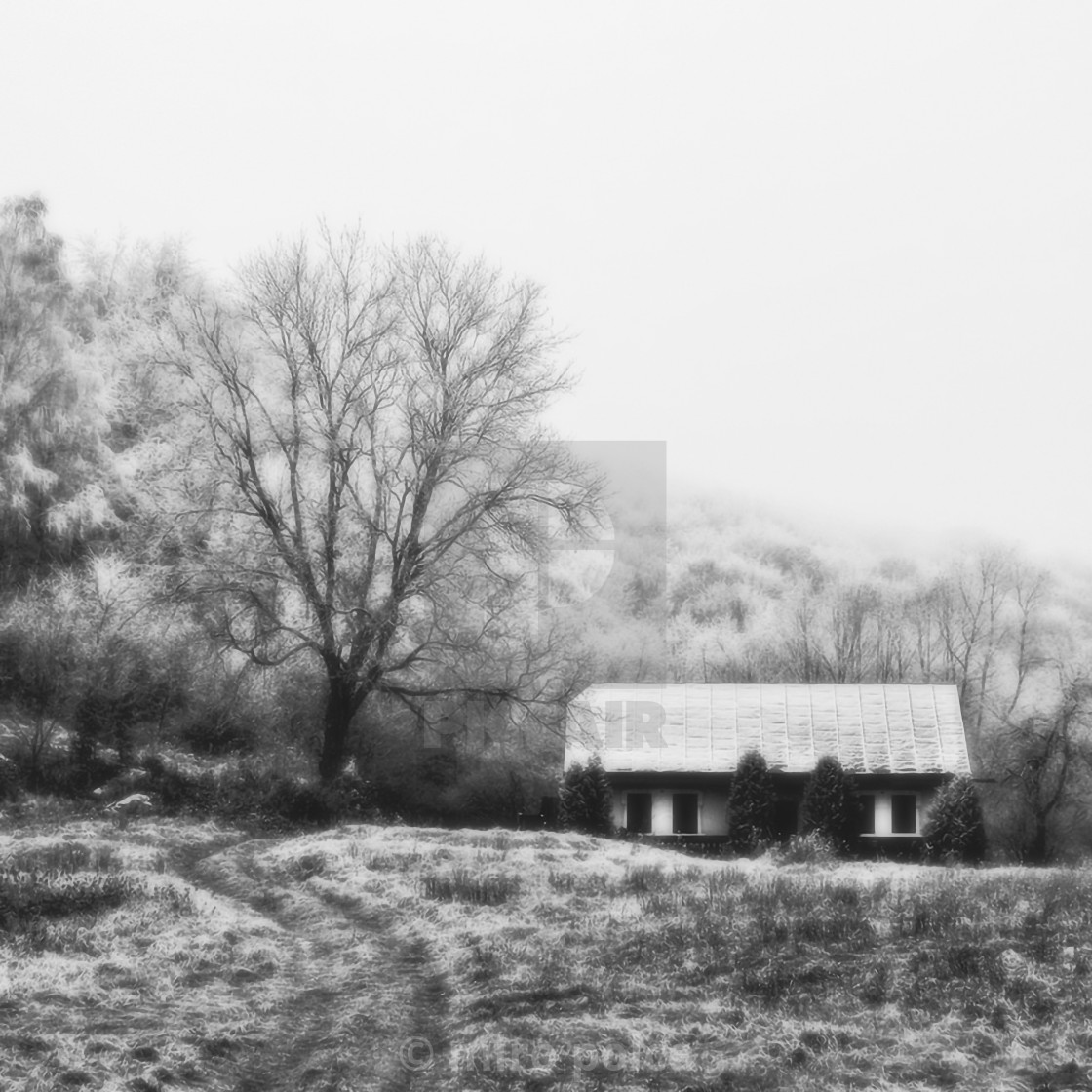 """""""little house and tree"""" stock image"""