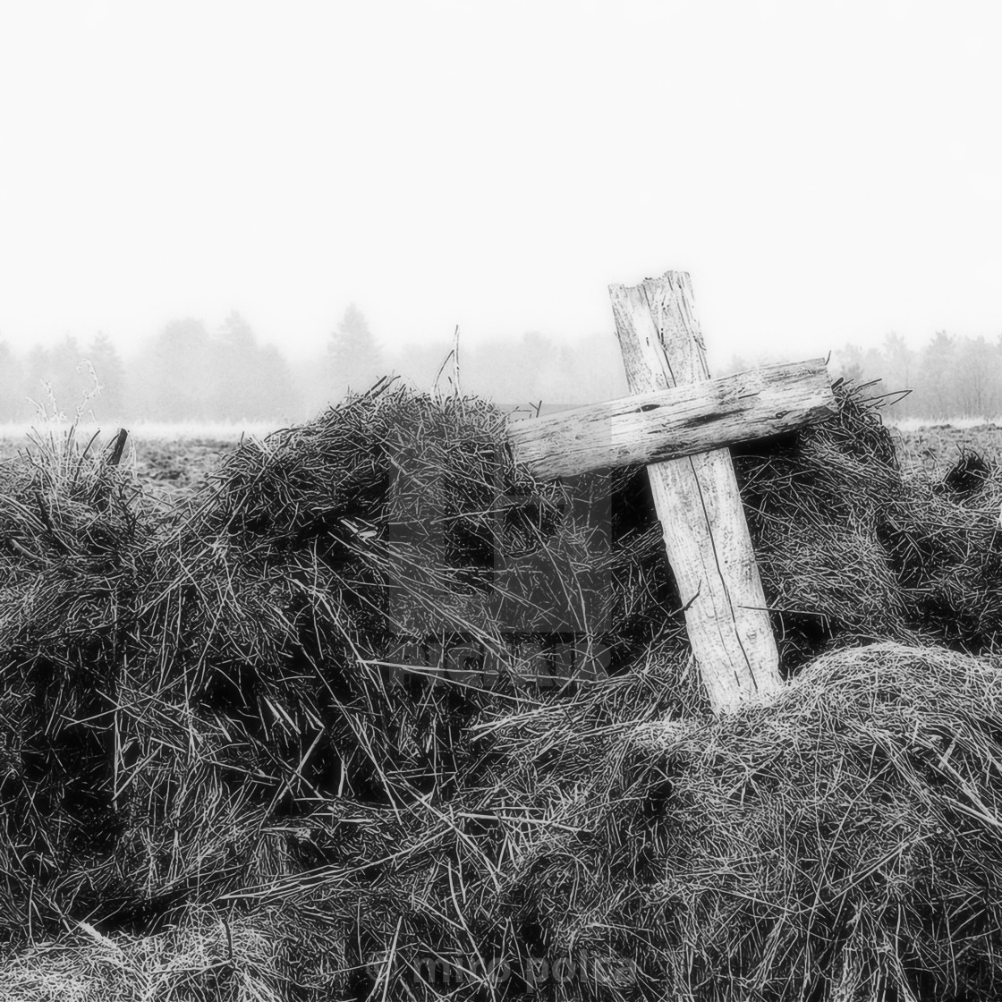"""cross on manure"" stock image"