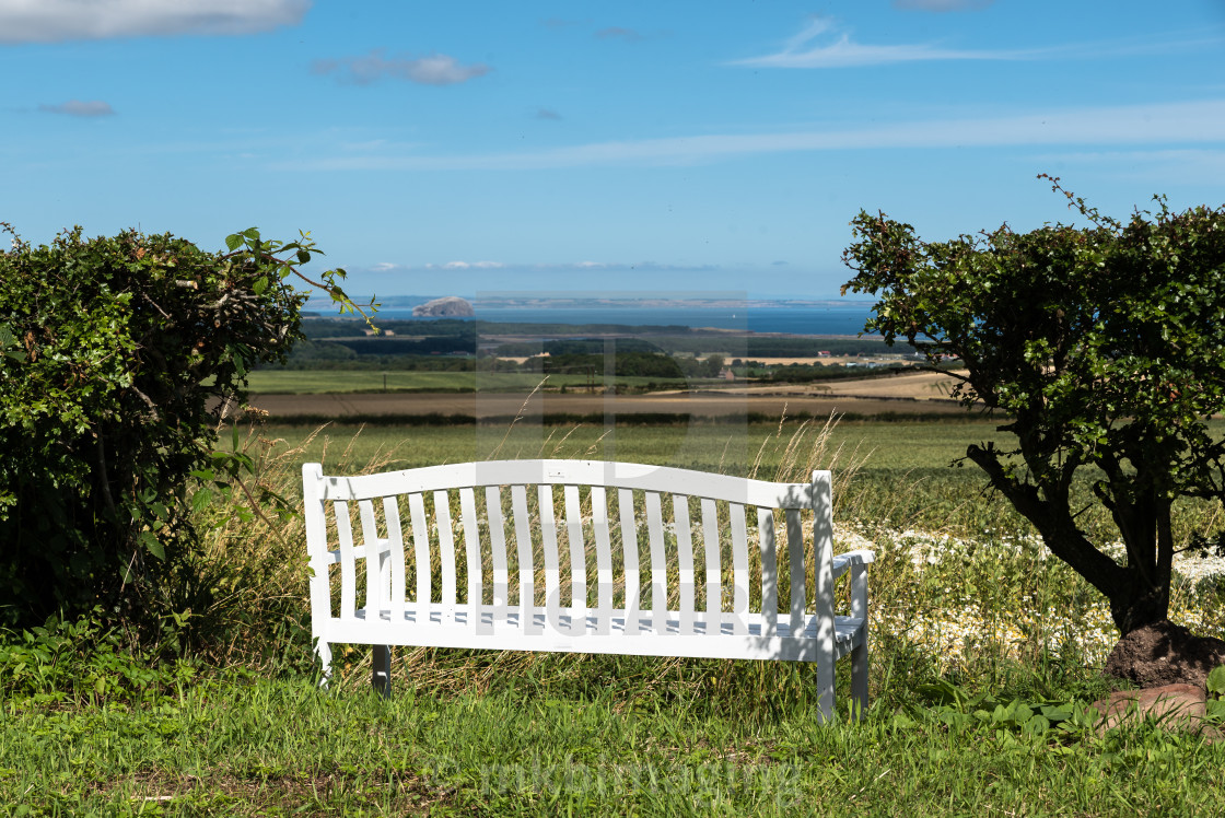 """A Pew with a View"" stock image"