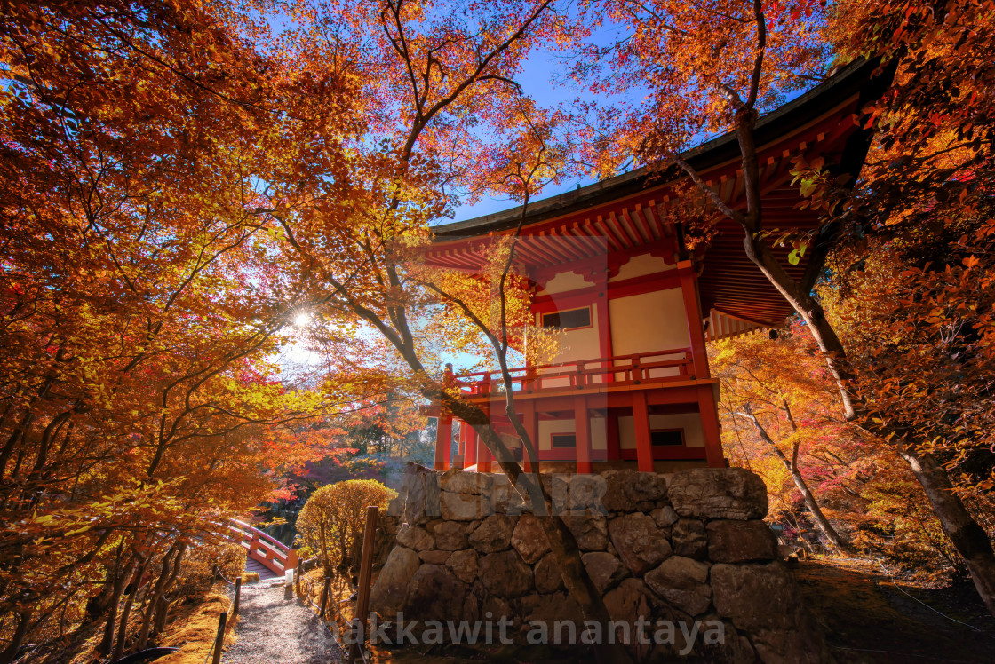 """""""Daigoji pagoda with autumn leaf, Kyoto"""" stock image"""