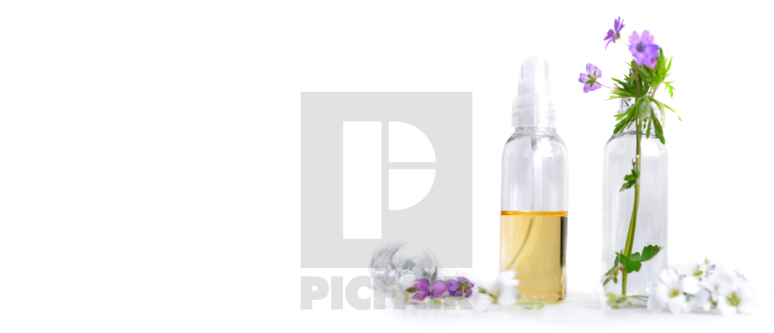 """""""front view of essential oil and petals of flowers in bottle in p"""" stock image"""