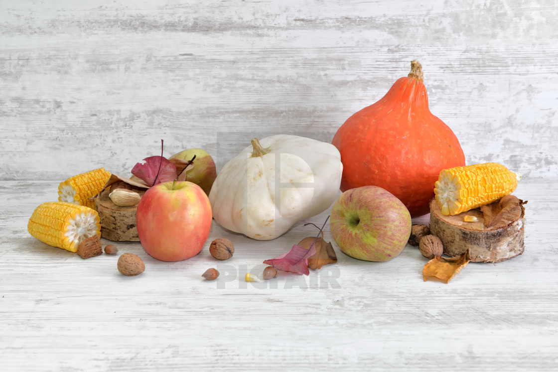 """""""various and colorful autumnal vegetables and fruits"""" stock image"""
