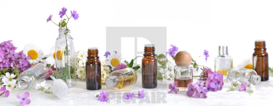 """bottles of essential oil and colorful petals of flowers on white table in panoramic size"" stock image"