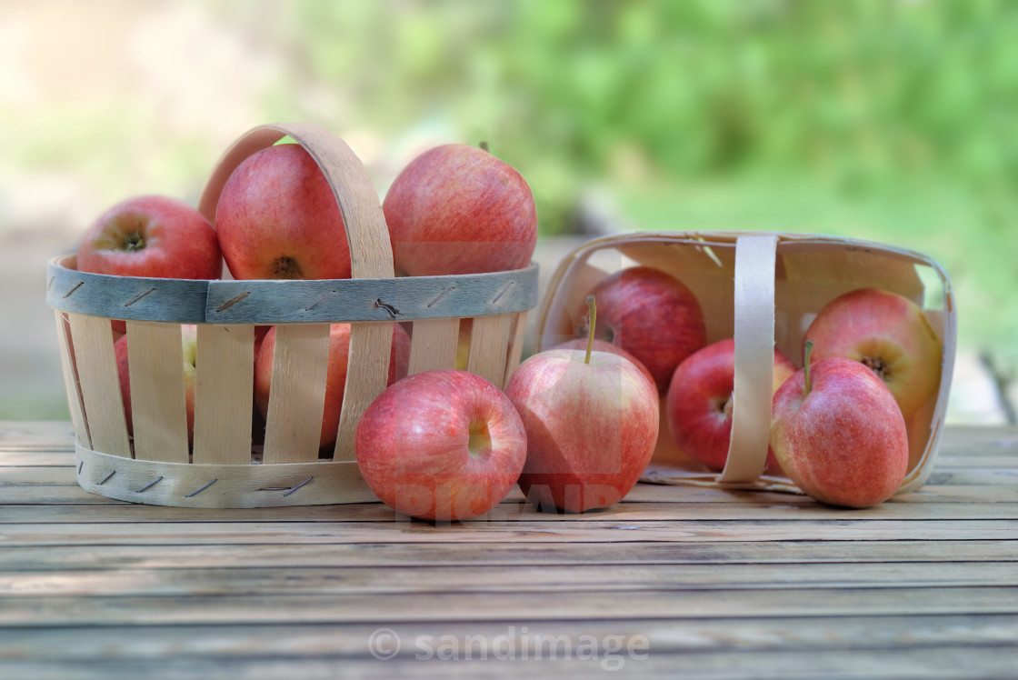 """group of red apples in little baskets on a wooden table in garde"" stock image"