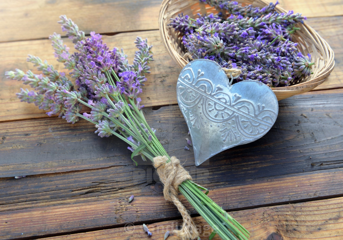 """decorative metal heart among flowers of lavender on wooden backg"" stock image"