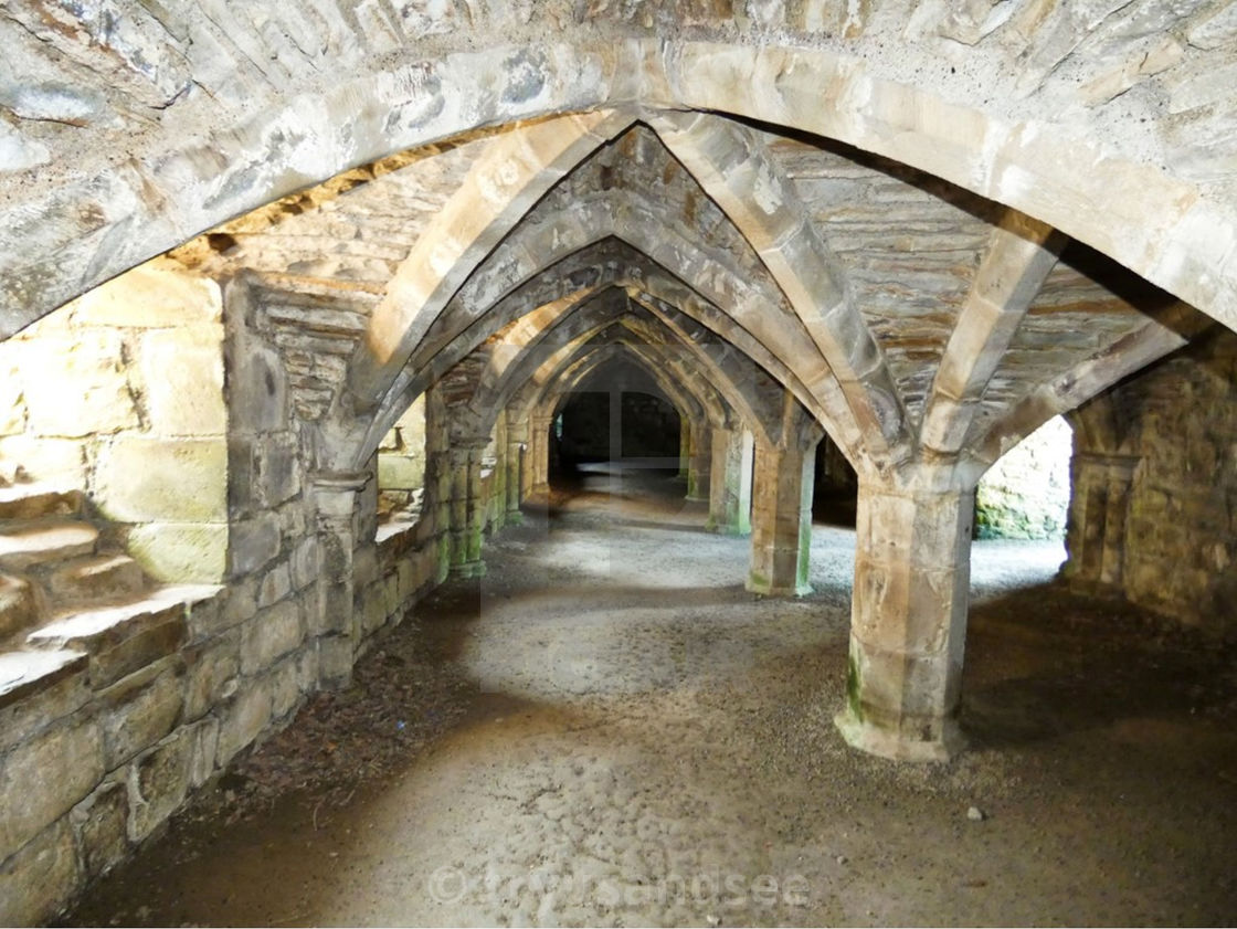 """Under Finchale Priory"" stock image"