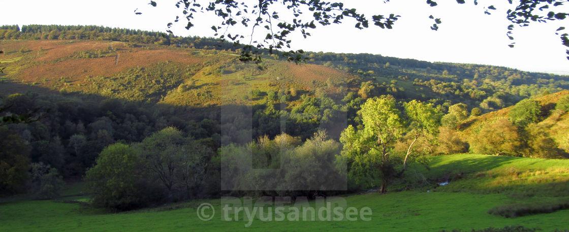 """Quantock Hills landscape"" stock image"