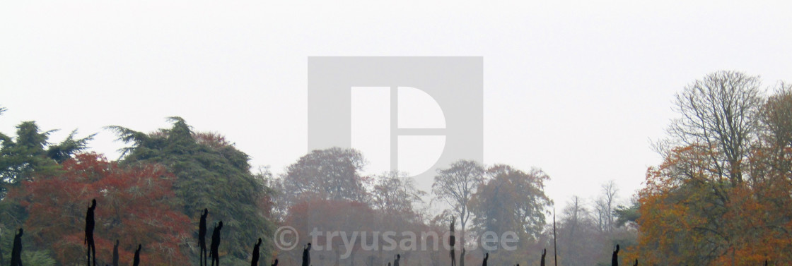 """""""Soldier figures at Remembrance Day in Blenheim"""" stock image"""