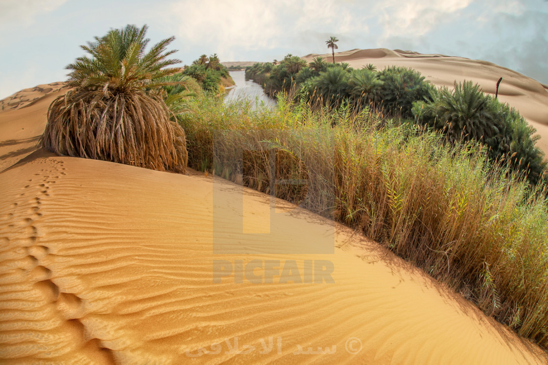 """um almaa lake in heart of sahara"" stock image"