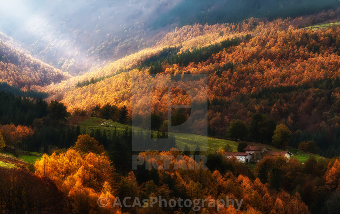 """Autumn light in valley"" stock image"