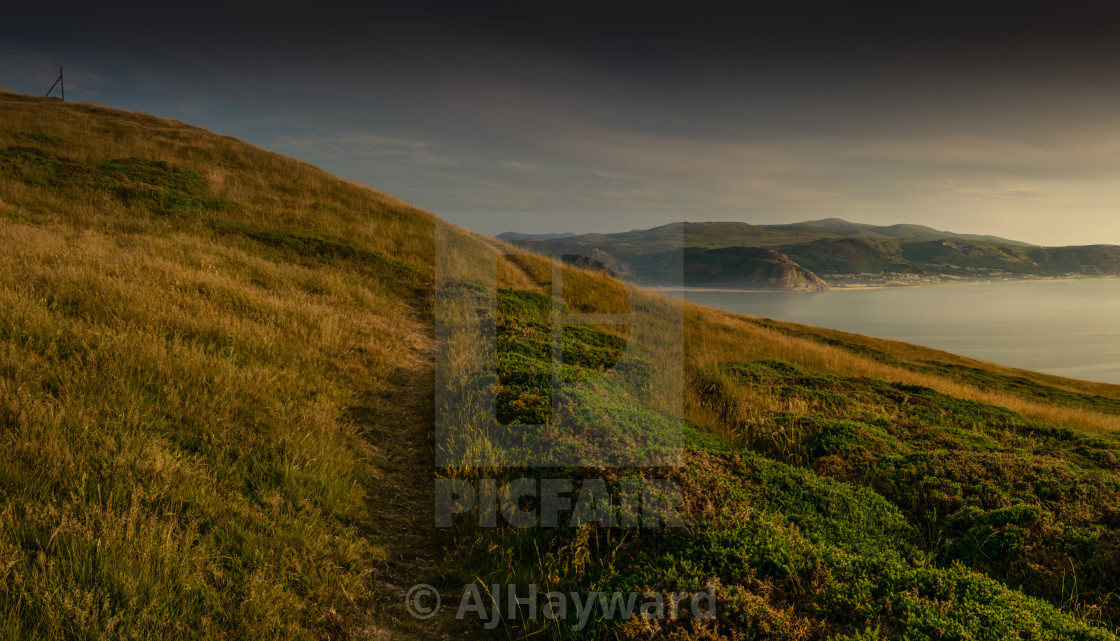 """""""Golden hour on The Great Orme, Llandudno"""" stock image"""
