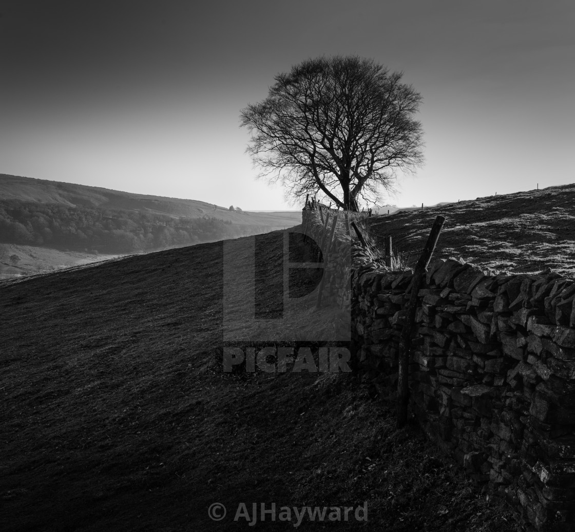 """Stone wall on Shuttingsloe Hill, The Peak District, UK"" stock image"