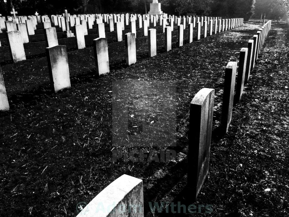 """""""Military Headstones"""" stock image"""