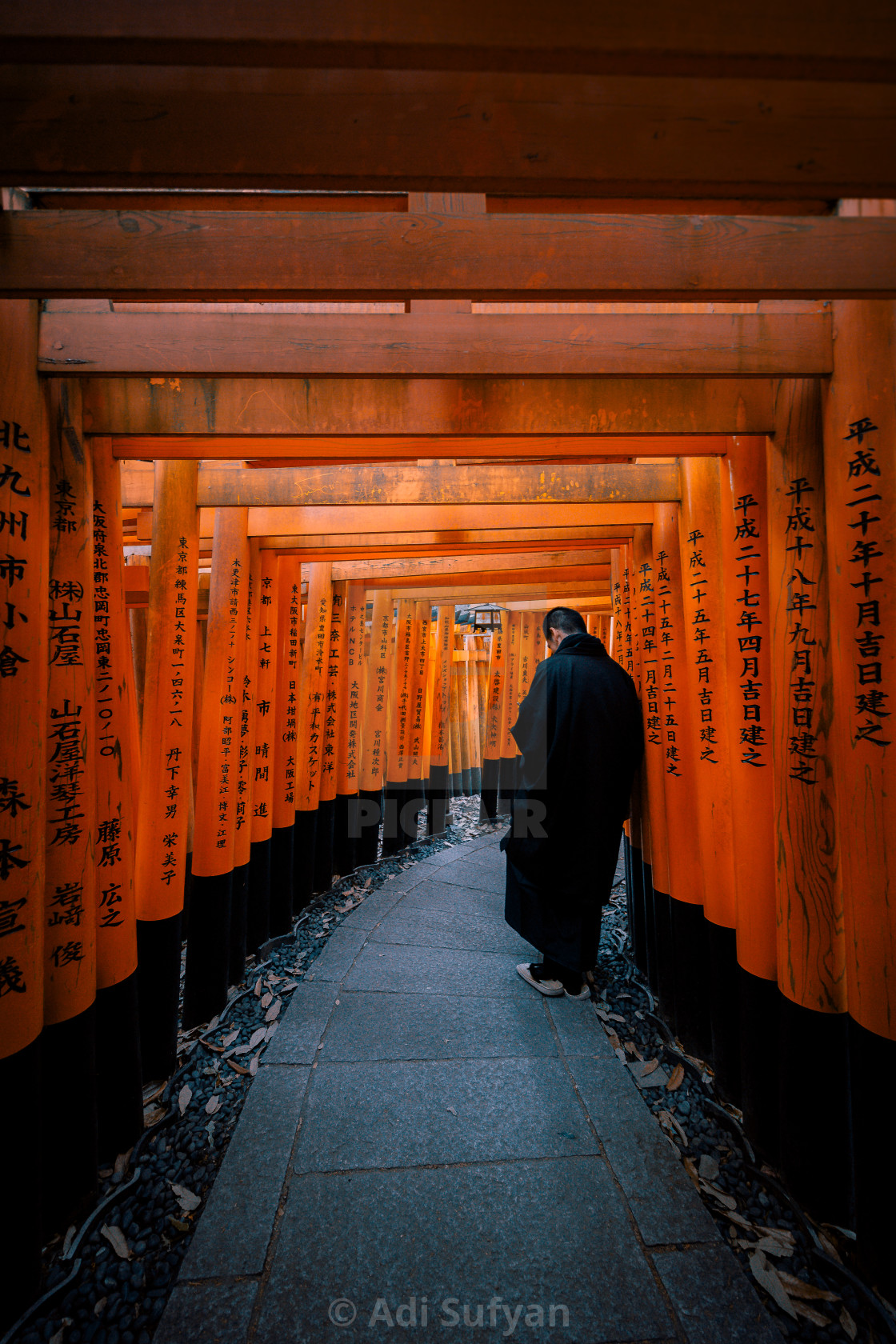 """Torii inception"" stock image"