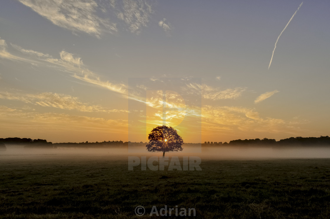 """Early start"" stock image"