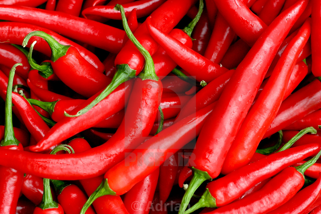 """Hot chili peppers"" stock image"