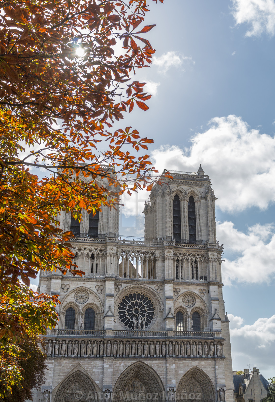 """Notre Dame Cathedral on autumn"" stock image"