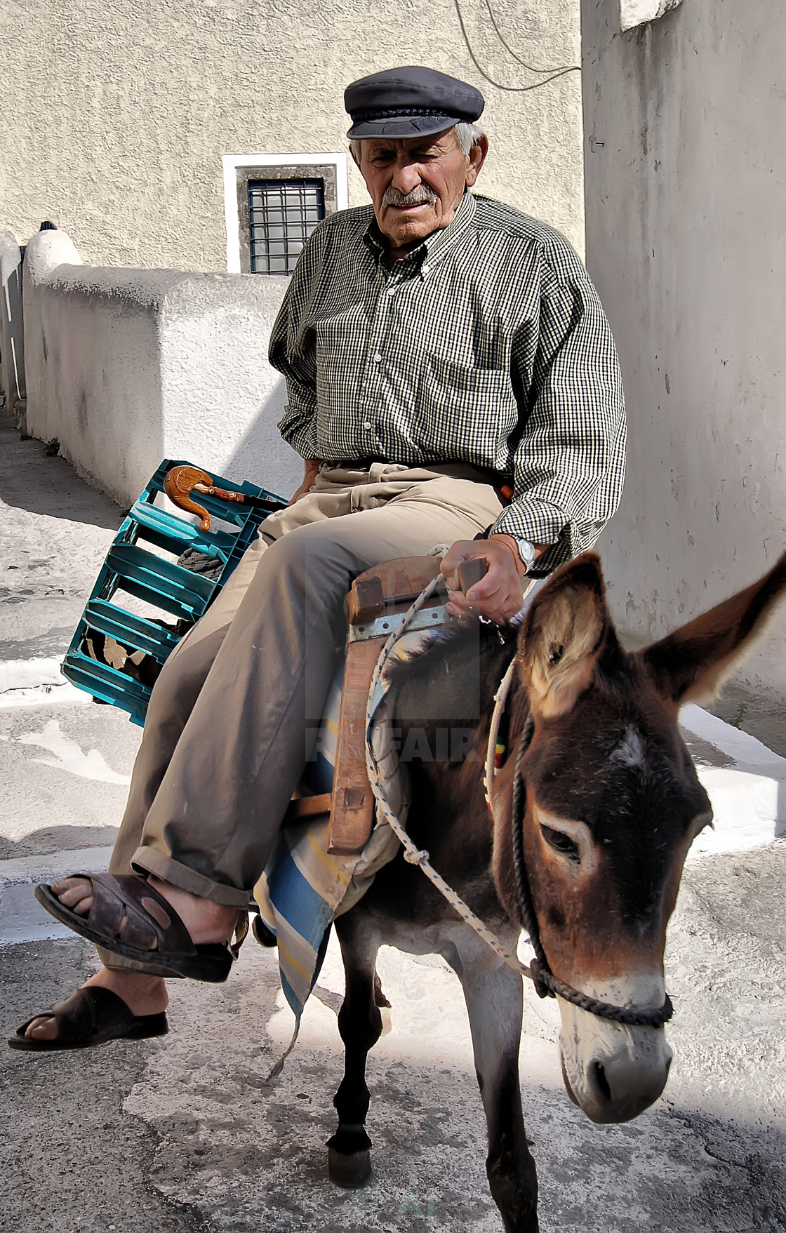 """Donkey ride in Santorini"" stock image"