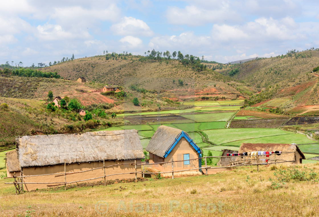 """Village in front of rice fields, Madagascar"" stock image"