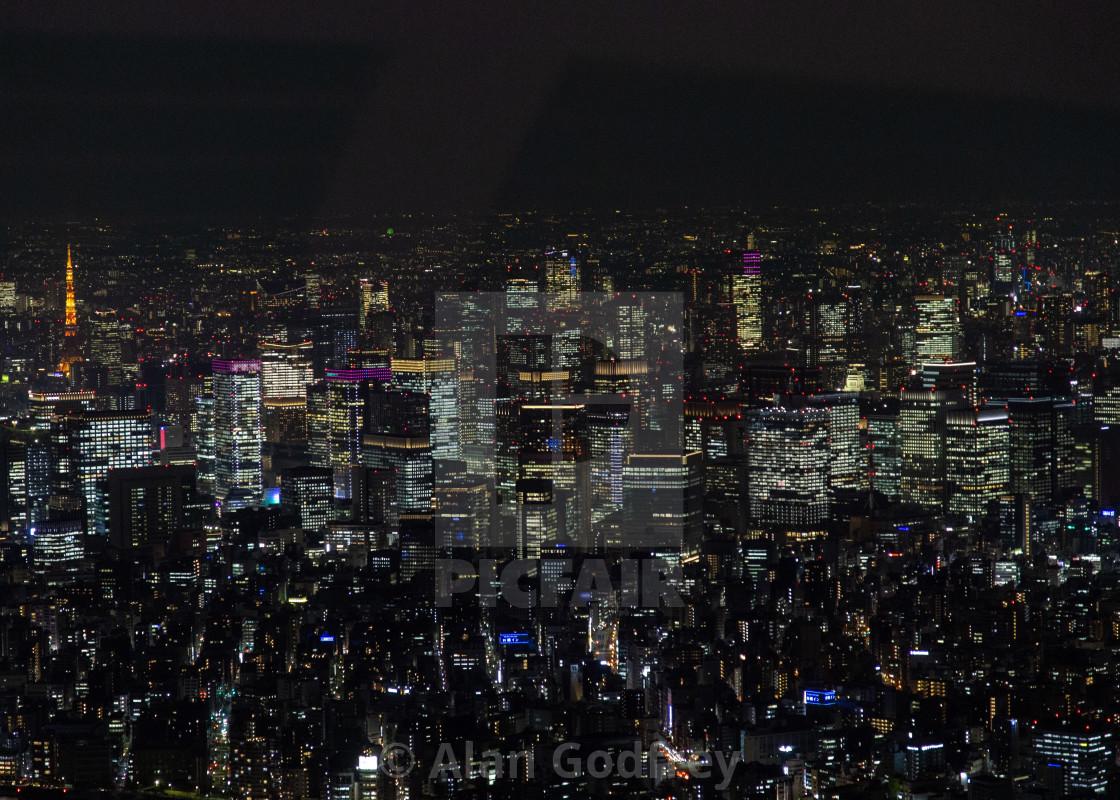 Bright lights, City nights