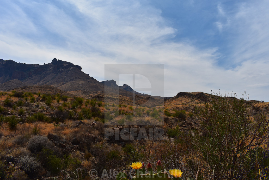 """Big Bend National Park, Texas"" stock image"