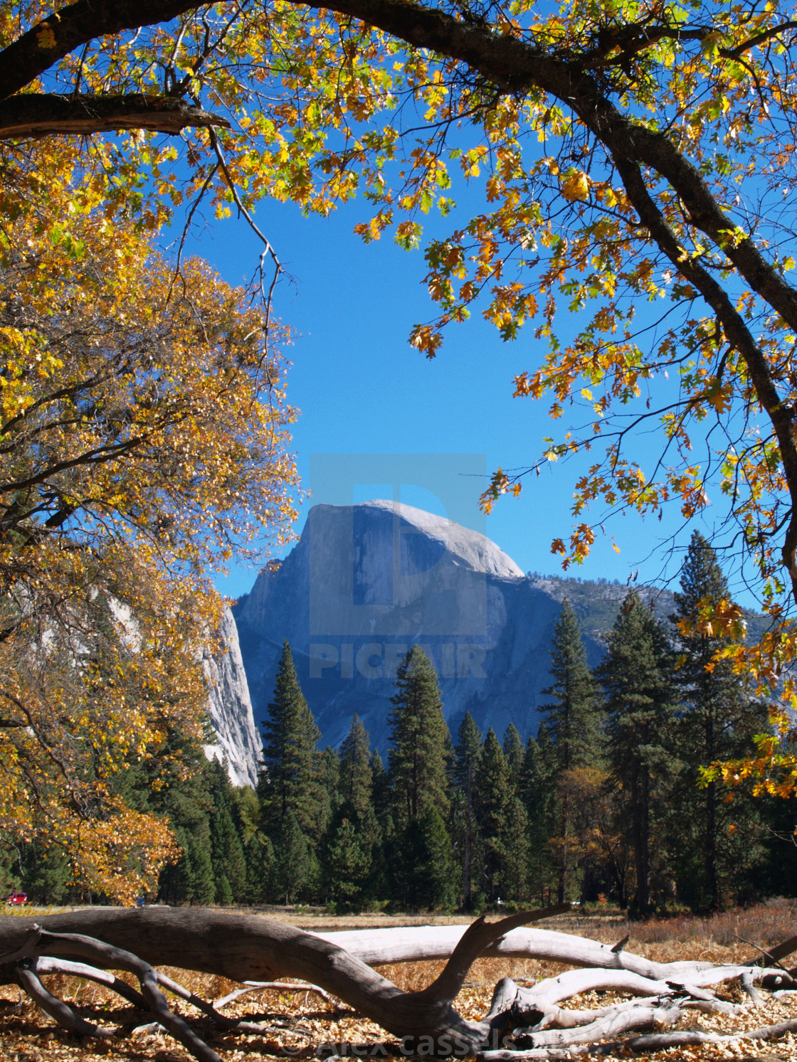 """Half Dome in Yosemite"" stock image"
