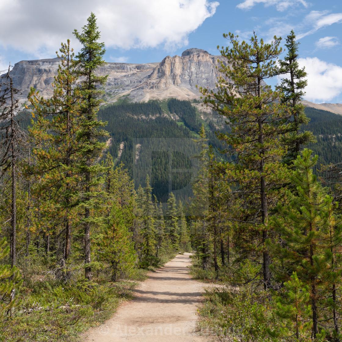 """""""Yoho National Park, British Columbia, Canada"""" stock image"""
