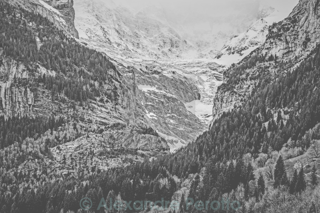 """Grindelwald alps"" stock image"