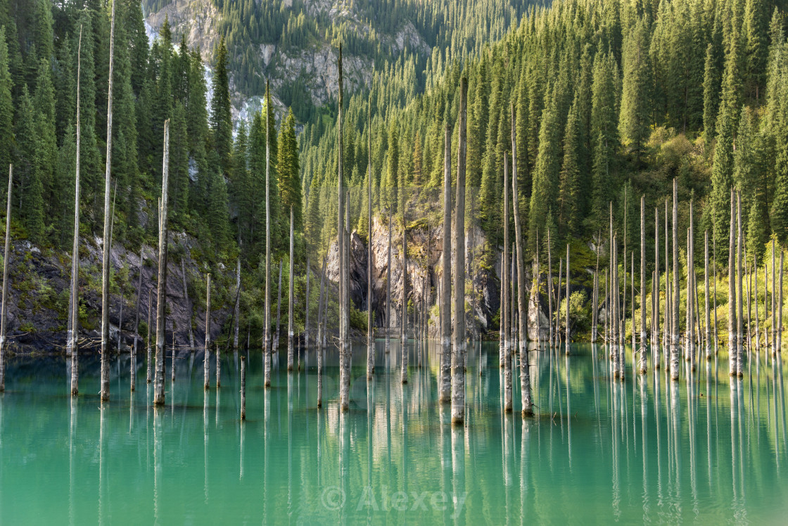 """Kaindy lake"" stock image"