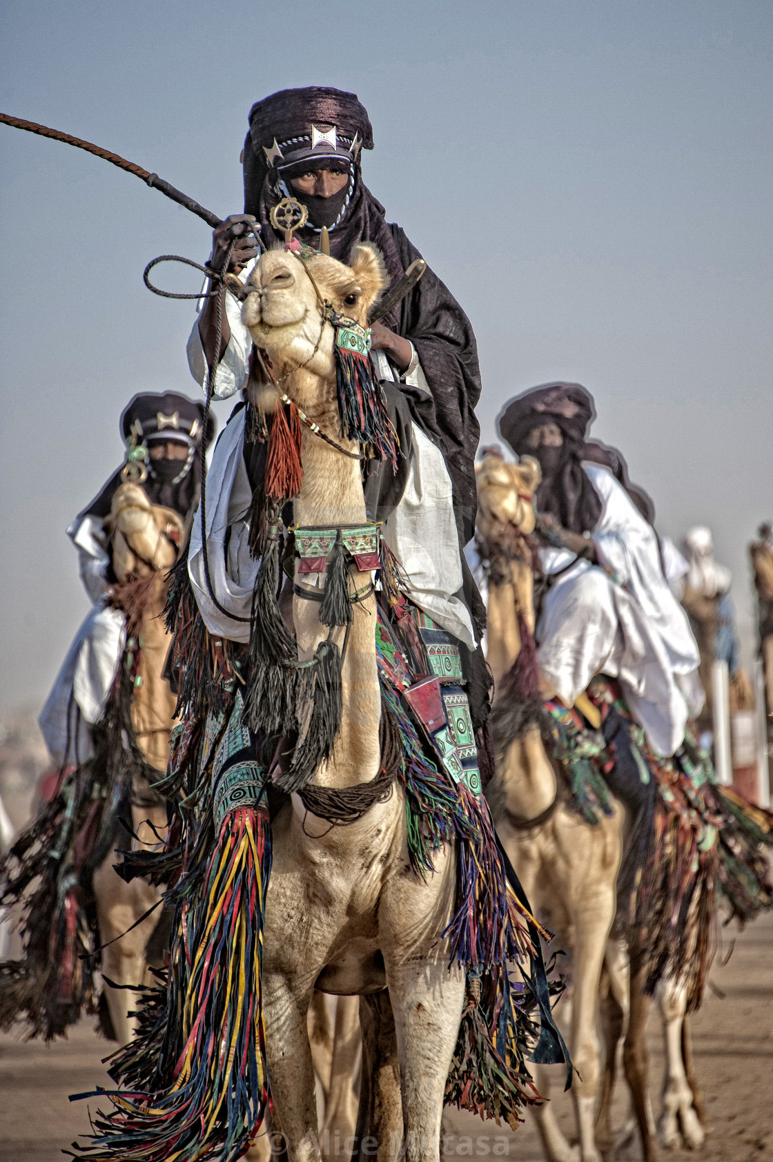 """Touareg on camel, Niger"" stock image"