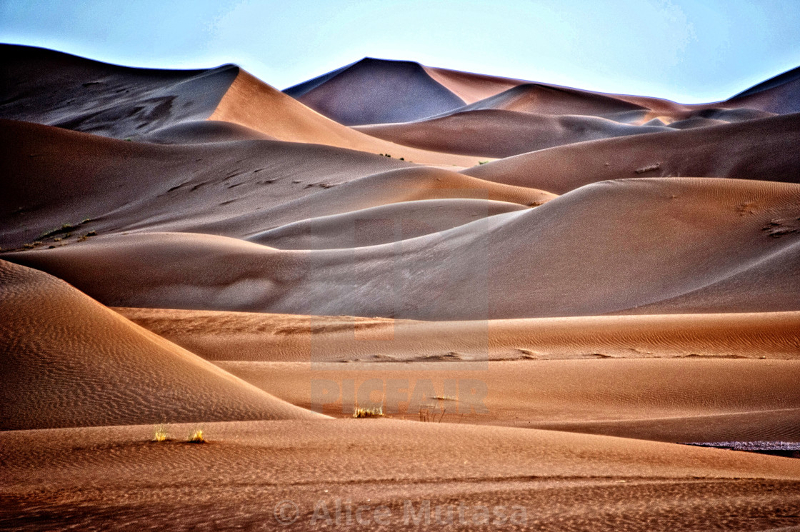 Sahara Desert dawn #06