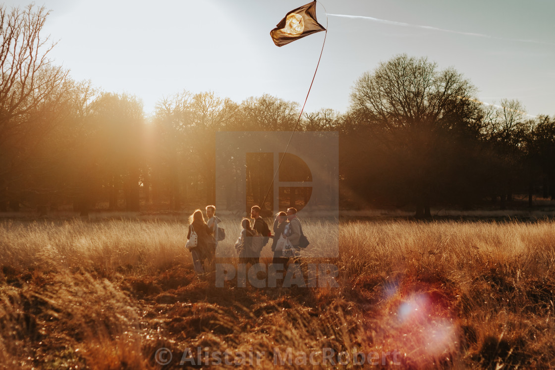 """""""Marching in the Golden Hour"""" stock image"""