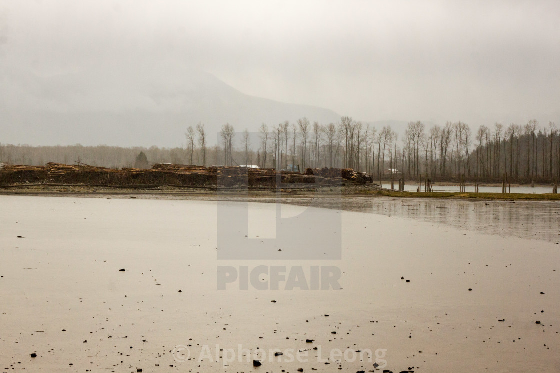 """Harrison River on cold cloudy day"" stock image"