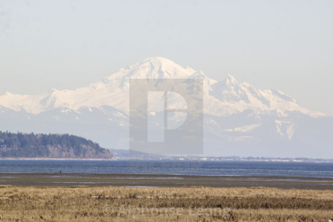 """""""Mount Baker viewed from across Canadian border"""" stock image"""