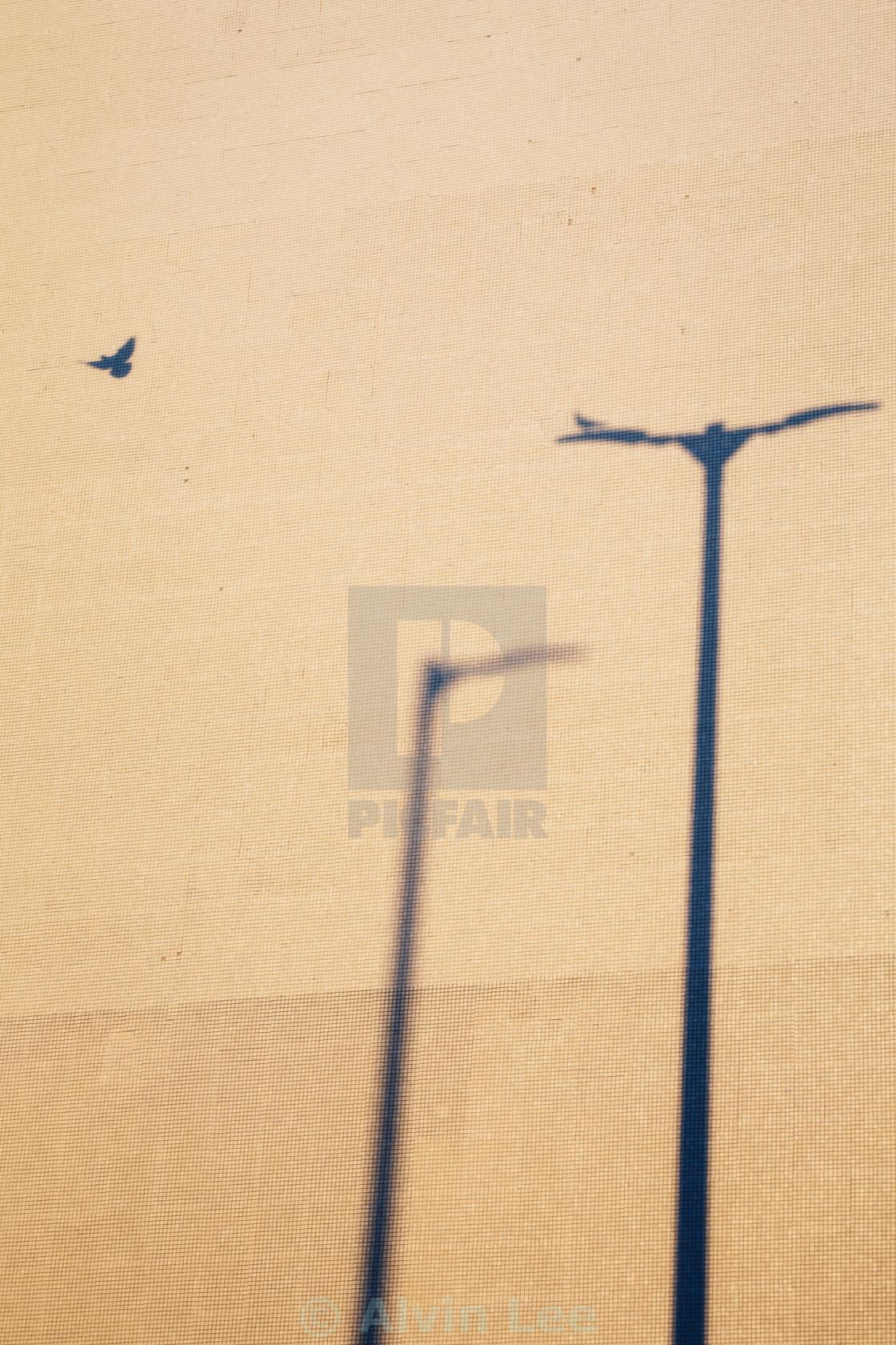 """Flyaway"" stock image"