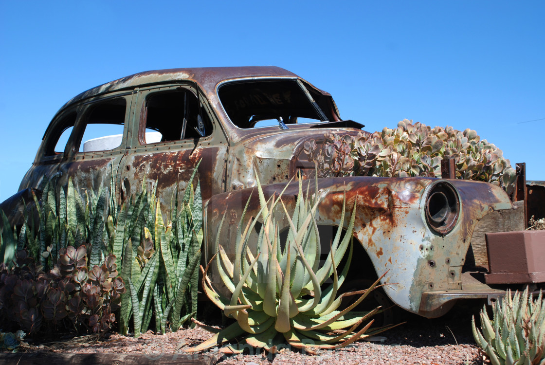 """Rusted Car Garden"" stock image"