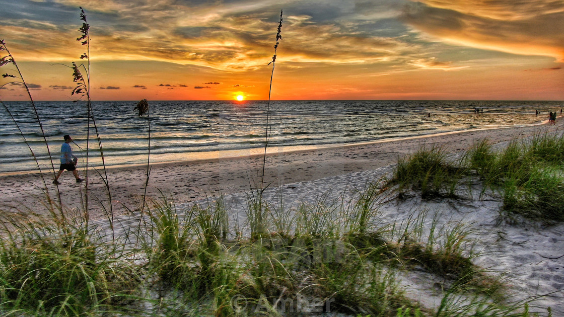 """""""Seagrass With A Sunset"""" stock image"""