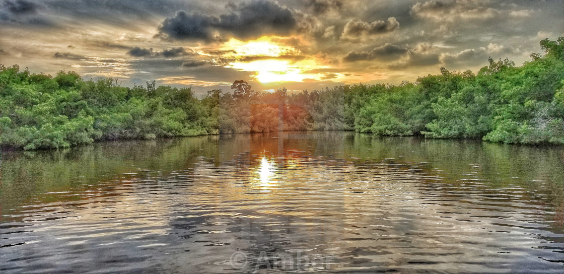 """""""Drone Aerial Of Sunset At Outer Clam Bay with Mangroves"""" stock image"""