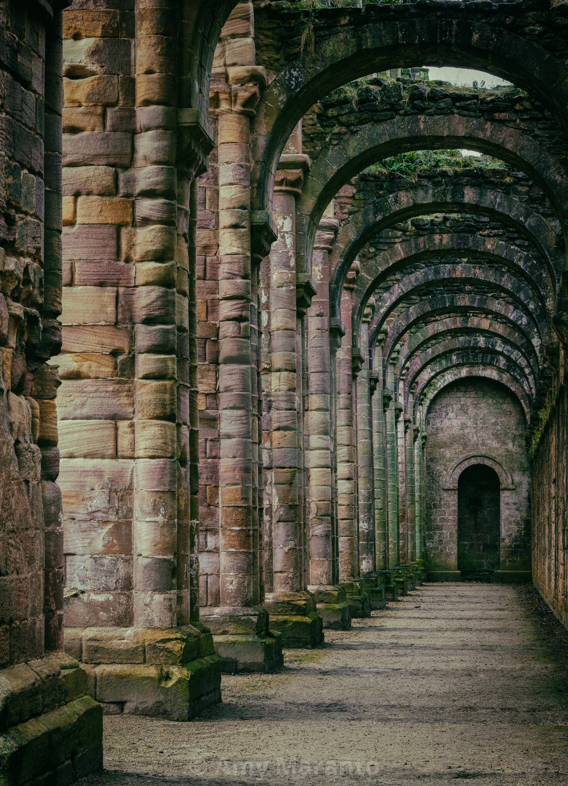 """Fountains Abbey Interior"" stock image"